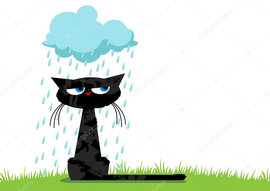 Funny unhappy cat and rainy cloud