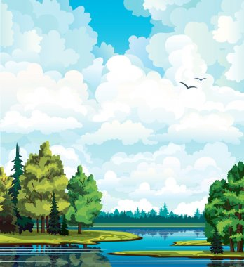 Summer green landscape with trees near the lake, forest and group of white cumulus clouds on a blue sky. stock vector