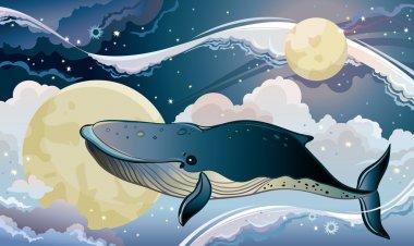 Cartoon whale and fantastic sky.