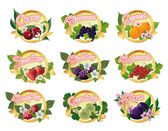 Photo Set of labels for marmalade