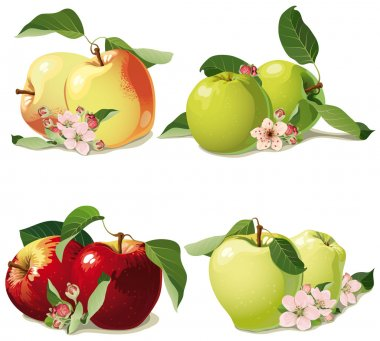 set of ripe apples