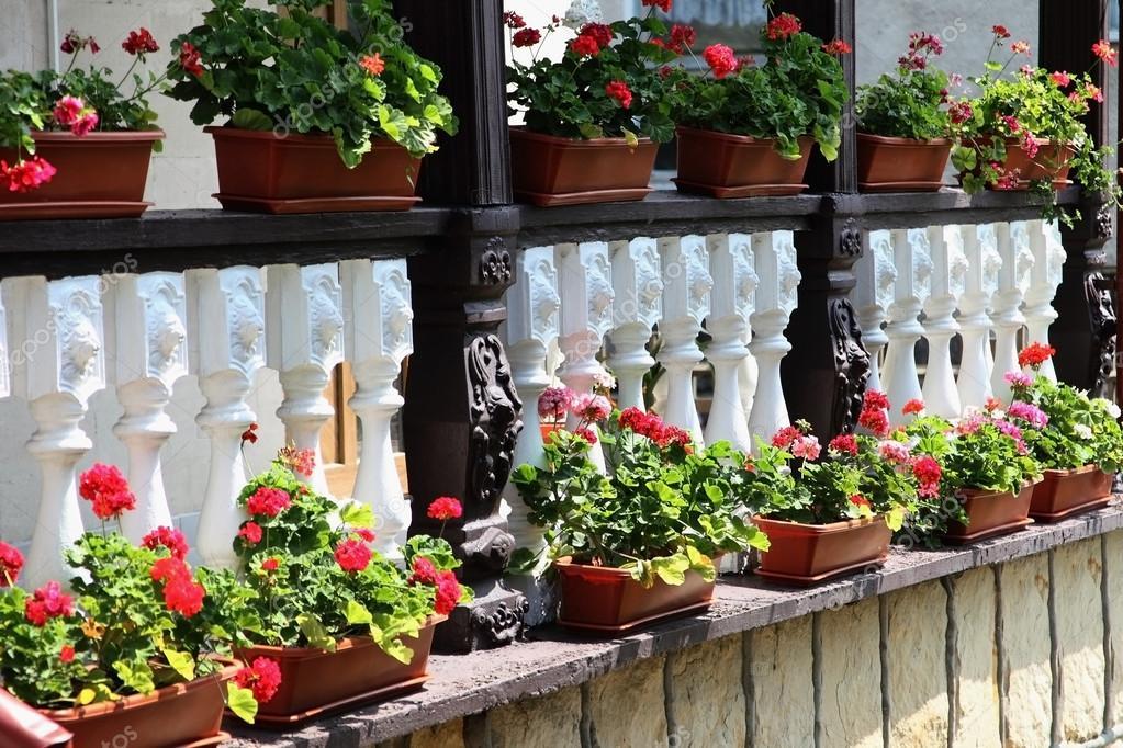 Flores Decoración Terraza De Una Casa En Moldavia Fotos De