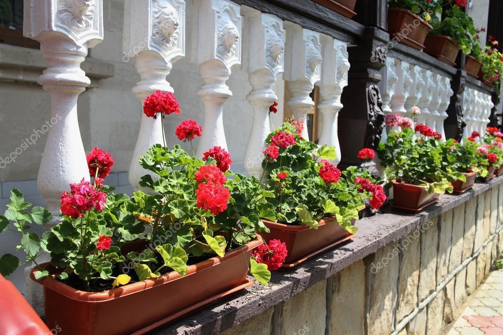 Flores Decoración Terraza De Una Casa En Moldavia Foto De