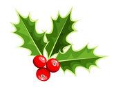 Christmas Holly. Vektor-illustration.
