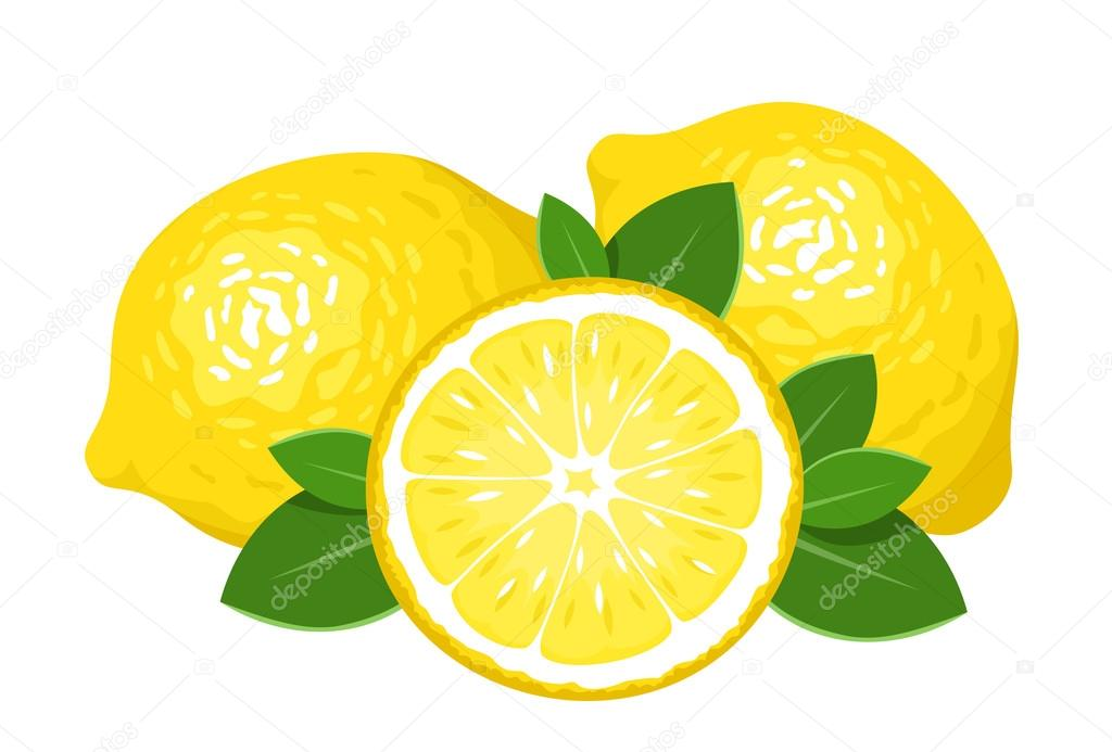 Three lemons isolated on white. Vector illustration.