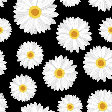 Seamless background with daisy flowers on black. Vector illustration.
