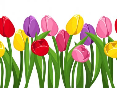Horizontal seamless background with colored tulips. Vector illustration.