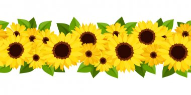 Horizontal seamless background with sunflowers and calendula. Vector illustration.