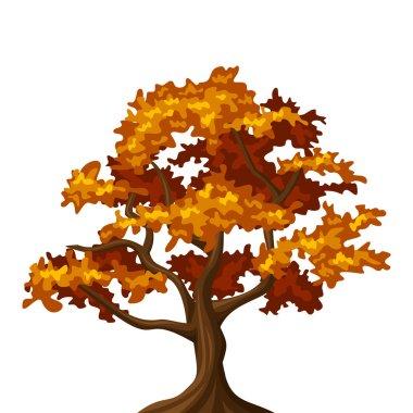 Autumn oak tree. Vector illustration.