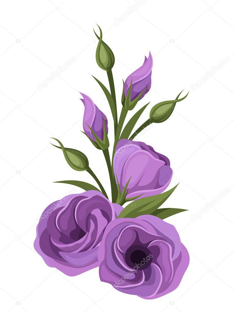 Purple lisianthus flowers. Vector illustration.