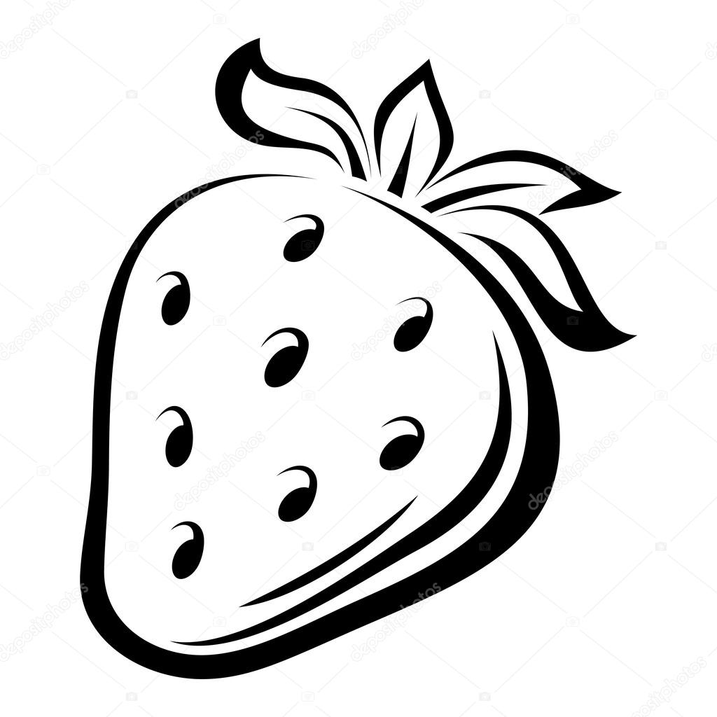 Contour drawing of strawberry. Vector illustration.