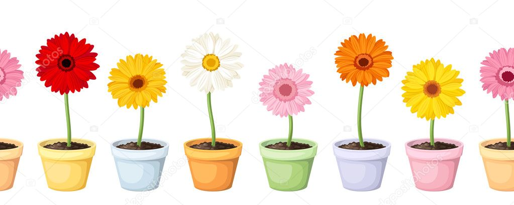 Gerbera in pots. Vector horizontal seamless background.