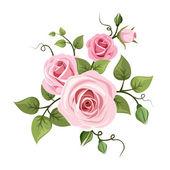 Fotografia rose rosa. illustrazione vettoriale