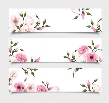 Set of three vector web banners with pink lisianthus flowers on white. stock vector
