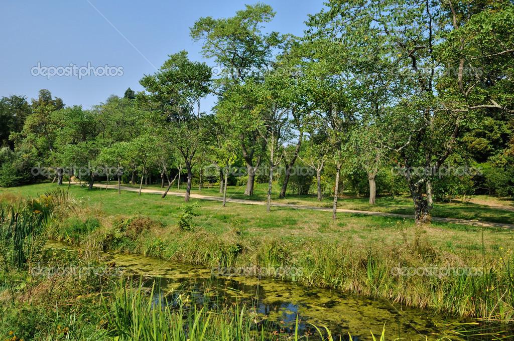 Paleis Van Versailles Tuin.Engelse Aangelegde Tuin In Het Park Van Versailles Paleis