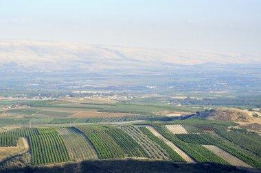 Upper Galilee landscape, Israel