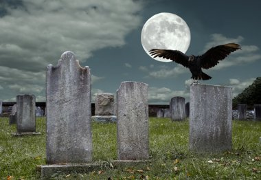 An old graveyard and vulture in the light of the full moon. stock vector
