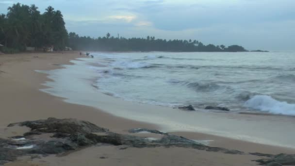 Tropical coastline ,Sri Lanka.