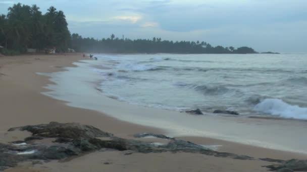Tropical coastline ,Sri Lanka.