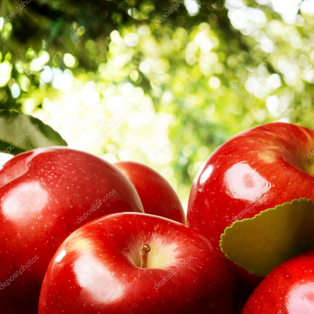 Apples outdoors
