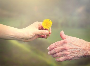 Woman giving dandelion to senior woman