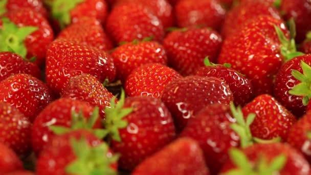 jahody zblízka