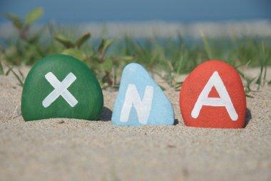 xna, xeno nucleic acid concept on stones