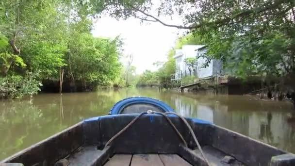 vista giungla mekong delta, vietnam, una barca in movimento