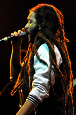 Artist Alborosie from Jamaica performs live on the stage at a concert