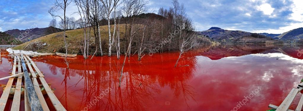 Environmental disaster. Panorama of a lake full with contaminate