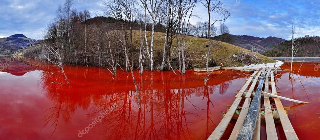 Environmental disaster. Panorama of a lake full with contaminate