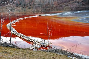 Pollution of a lake with contaminated water