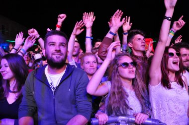 Partying people during a live concert