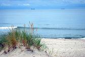 schöne Ostseestrand-Landschaft, Dünen, Sandstrand, blauer Himmel