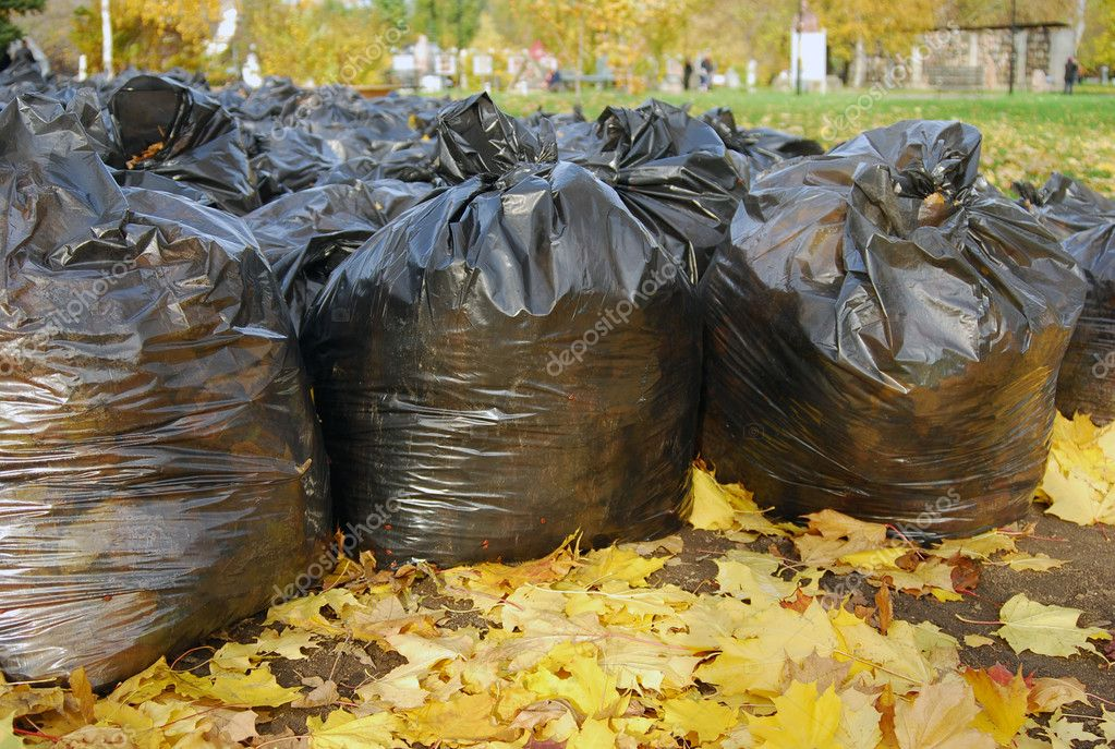 Many black garbage bags filled-in by autumn fallen leaves in the park