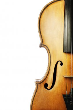 Violin musical instruments orchestra