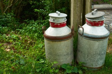 Milk cans jugs in a farm