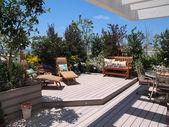 Fotografie krásné kvetoucí střešní zahrada v městské prostředí