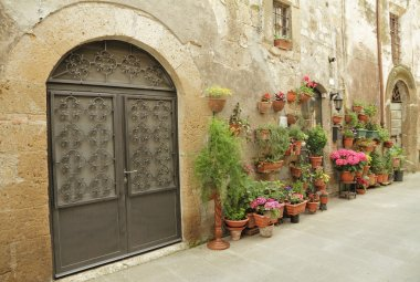 wrought iron gate and many flowers in tuscan village Pitigliano,