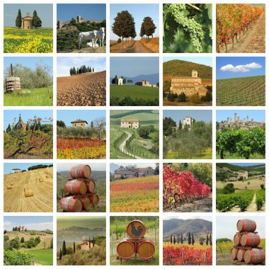 series of images with fantastic tuscan landscape, Italy, Europe
