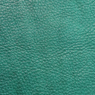 teal textured leather background