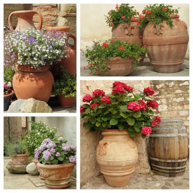 group  of images with stylish ceramic planters, Italy, Europe