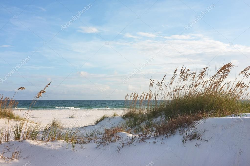 Beautiful beach and dunes at sunset
