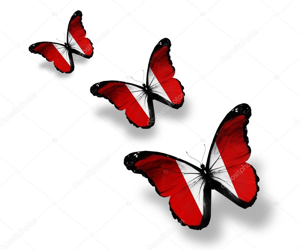 Three Peruvian flag butterflies, isolated on white