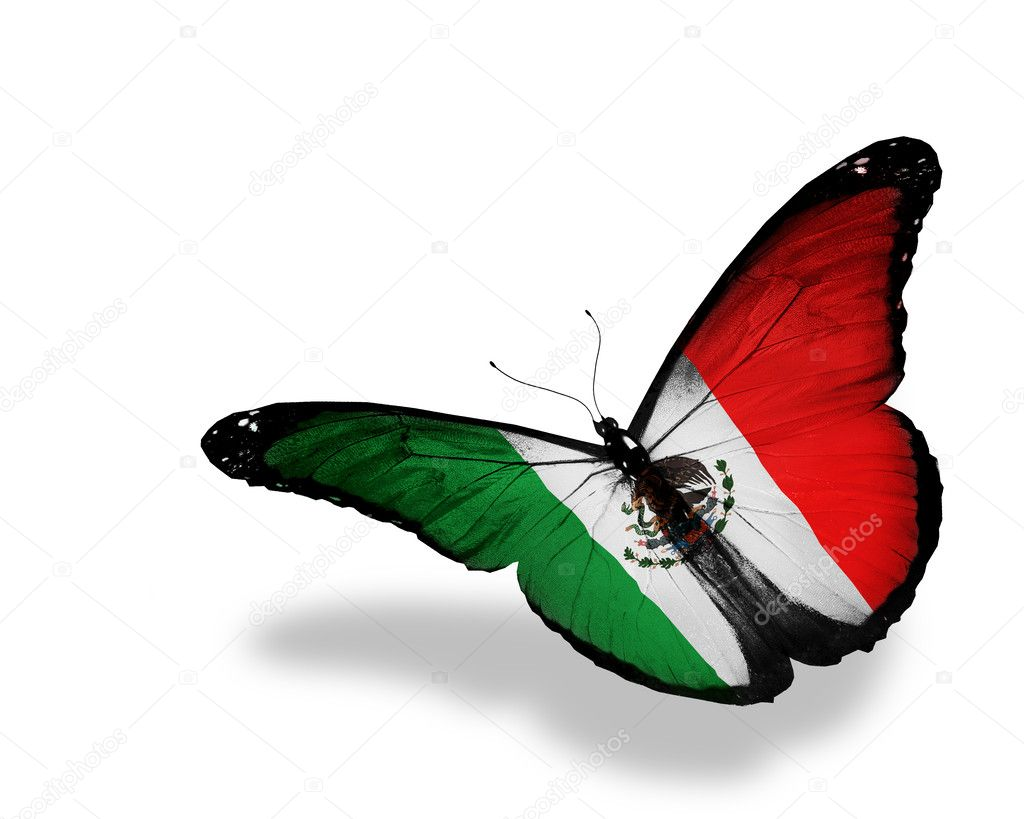 United Mexican States flag butterfly flying, isolated on white b