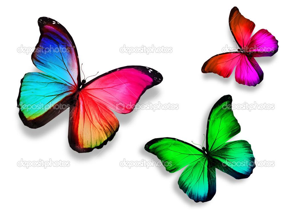 Imágenes: Tres Colores