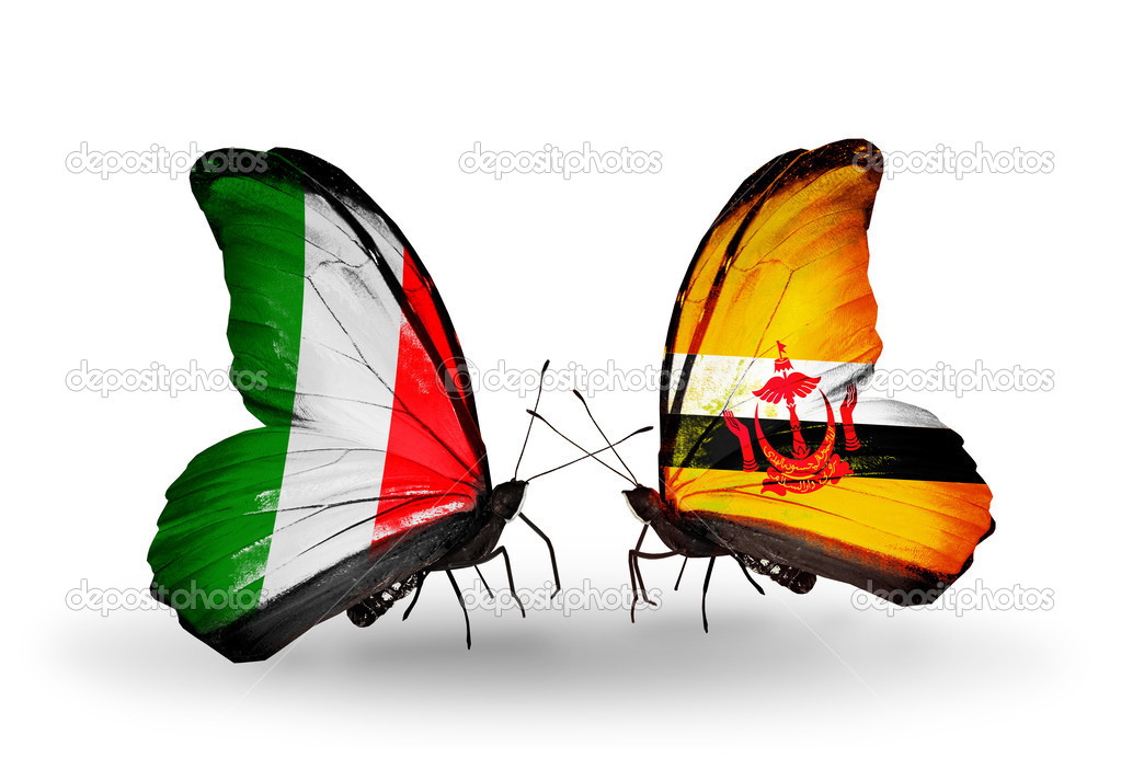 Two Butterflies With Flags On Wings As Symbol Of Relations Italy And