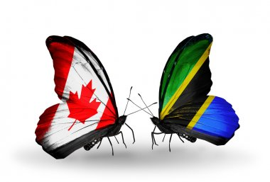 Two butterflies with flags on wings as symbol of relations Canada and Tanzania