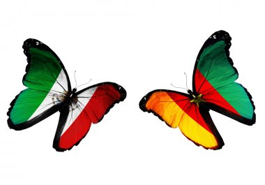 Concept - two butterflies with Mexico and Cameroon flags flying, like two football teams playing