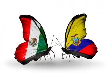 Two butterflies with flags of Mexico and Ecuador on wings